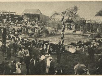 SOCHACZEW 1911(1)b