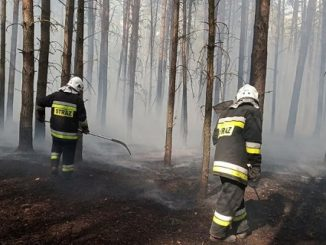 pożary IV